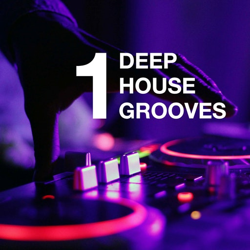 Deephouse Grooves (Volume 1)