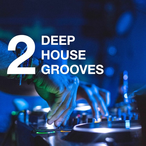 Deephouse Grooves (Volume 2)