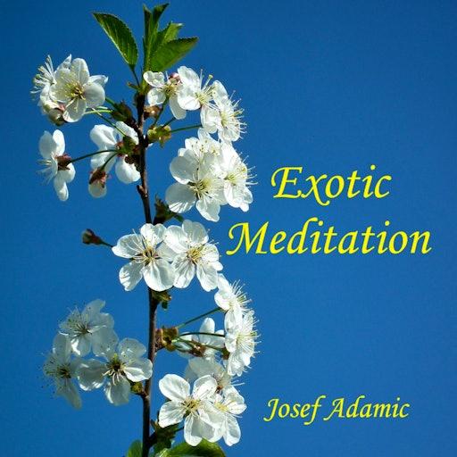 Exotic Meditation