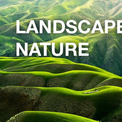landscape / nature